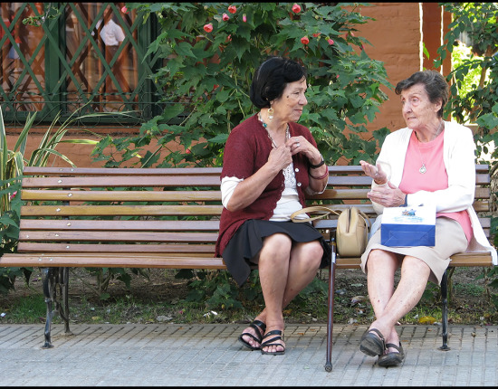 Two older ladies talk on a wooden park bench. A large plant is behind them.