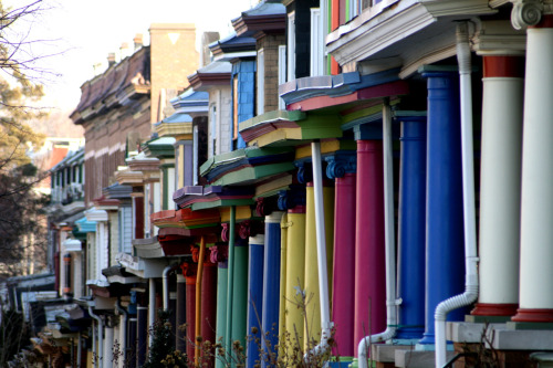 Multicolored houses all in a row in Baltimore, Maryland.