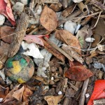 A close up of a leaf pile that has discarded string and a colorful ball.
