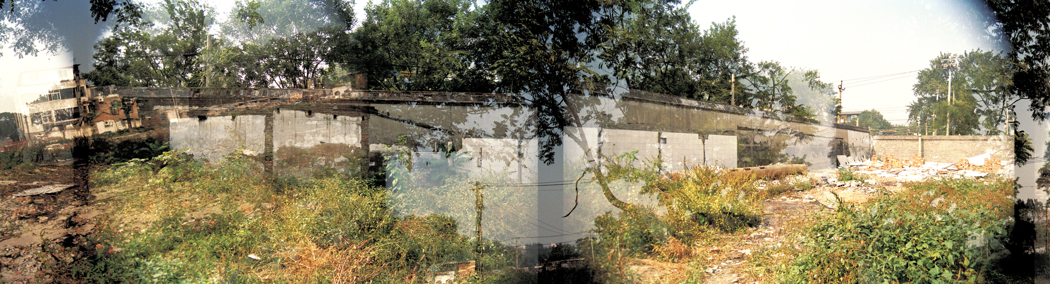 Images of trees, a cement wall, and windows have been stitched together