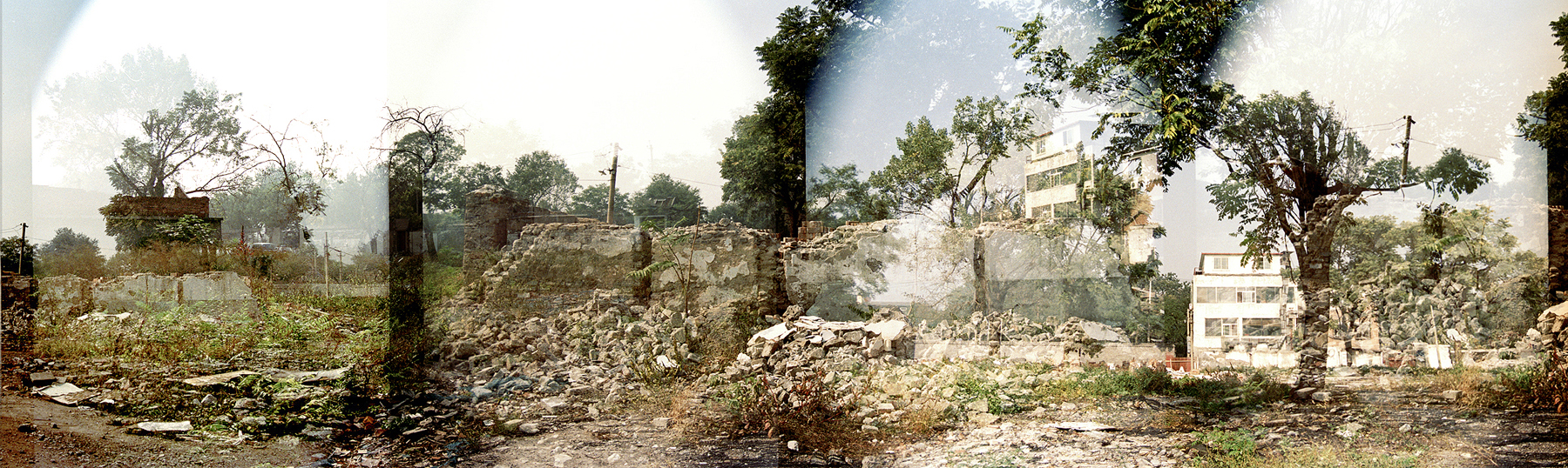Images of struggling trees and a destroyed brick house have been stitched together.