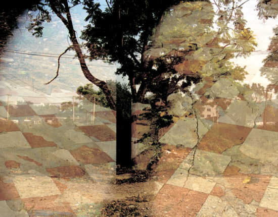 Image of trees and a checkerboard floor pattern are stitched together.