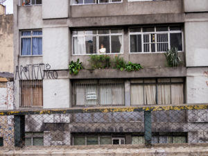 The side of an old and run-down building that has multiple windows, windowsill plants, and a person inside the building looking out of one of the windows.